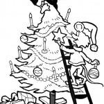 Weihnachtsbäume-29