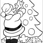 Weihnachtsbäume-35