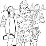 Weihnachtsbäume-40