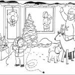 Weihnachtsbäume-43