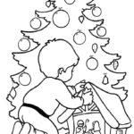 Weihnachtsbäume-53
