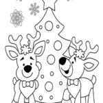 Weihnachtsbäume-54