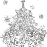 Weihnachtsbäume-55